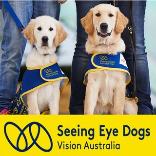 All About Seeing Eye Dogs - Dr Nicola Cotton