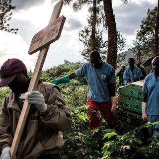 Ebola & the Congo