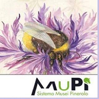 Pinerolo, alla Notte delle Muse 2019 esordisce la Tessera museale MUPI