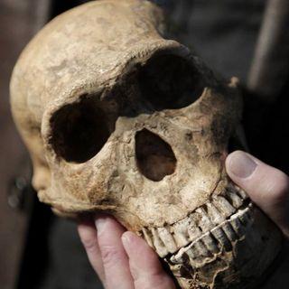Identifican Homo sapiens no africano más antiguo