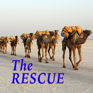 The Rescue, Genesis 14:13-16