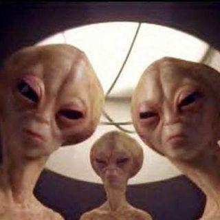 #sa Alieni in negozio
