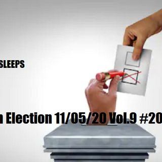How Rig An Election 11/05/20 Vol.9 #203