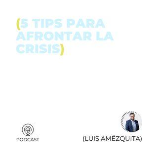 33 - Luis Amézquita (5 tips para afrontar la crisis)