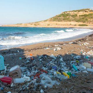 SALUD 21: Descubre qué enfermedades podrías adquirir si te bañas en playas no aptas