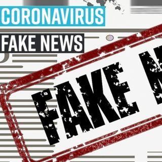 #arezzo Fake to face - novità