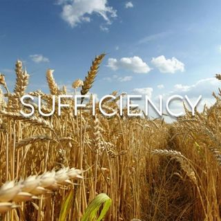 Sufficiency - Morning Manna #2859
