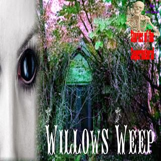 Willows Weep | Interview with Dave Spinks | Podcast