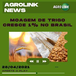 Podcast: Cresce a moagem de trigo no Brasil