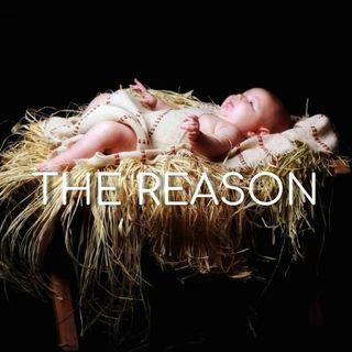 The Reason - Morning Manna #2927