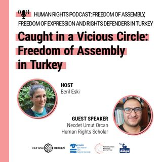 Caught in a vicious circle: Freedom of assembly in Turkey