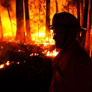 Australia's bushfires fuel the climate change debate