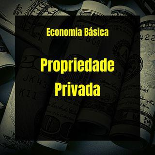Economia Básica - Propriedade Privada - 03