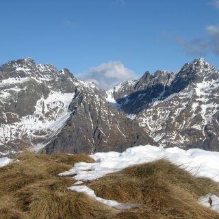 Il ripopolamento delle valli alpine