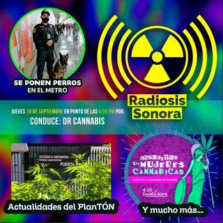 Radiosis Numero 6