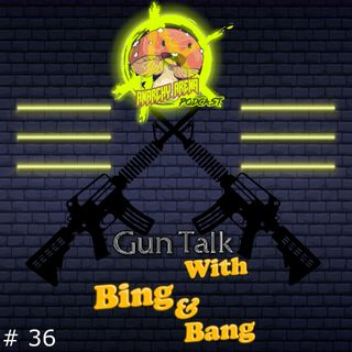 Episode 36: Gun Talk, with Bing and Bang