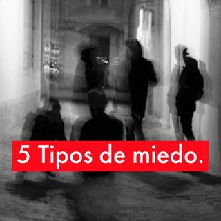 Los 5 Tipos de Miedo