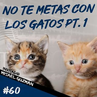 Episodio 60 - No Te Metas Con Los Gatos Pt.1
