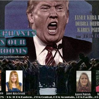 James Tolley ~ 08/06/20 ~ Elephants in Our Rooms ~ Hosts Janet Kira Lessin, Debr