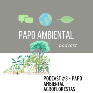 Podcast #8 - Agroflorestas