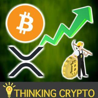 BITCOIN MINING Profitable Again - Bitcoin Bull Market? - XRPTipBot European Banking License! - 0x, Pundi X, Holochain & Vechain Portfolio