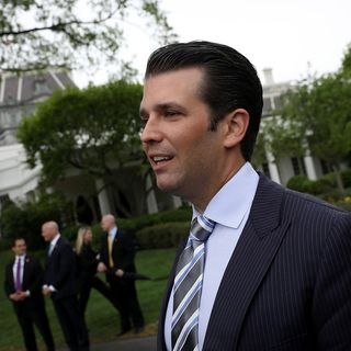 Trump Jr. Meeting: Something or Nothing?