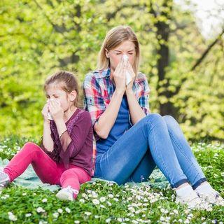 Pollen allergiáról őszintén - gyógyító gyakorlatok, Dr. Bükki Tamás, jógaterapeuta