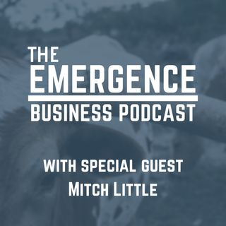 More than an Academic Pursuit with Mitch Little of Scheef & Stone