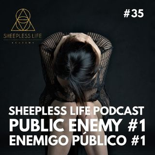 035 - Public Enemy #1