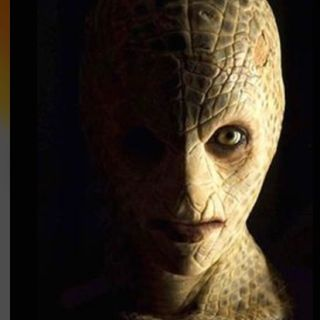Reptilians are they real?
