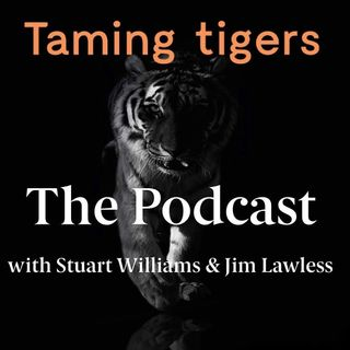 #3 I Want To Be On The Other Side of The Railings - Taming Tigers Podcast