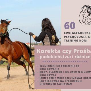 Live 60: Korekta czy Prośba w treningu koni
