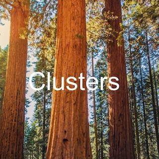 How The Grubb Institute inspired the creation of Clusters