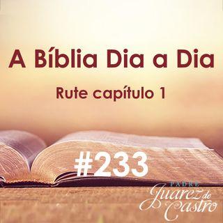 Curso Bíblico 233 - Rute Capítulo 1 - Dedicação de Rute a Noemi, sua sogra - Padre Juarez de Castro