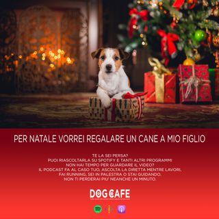 #46 - Per Natale vorrei regalare un cane a mio figlio.