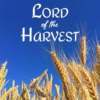 Lord of the Harvest with Extended Relaxing Piano Music
