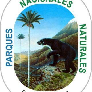 NUESTRO OXÍGENO Parques naturales del pacífico - Biólogo Robinson Galindo