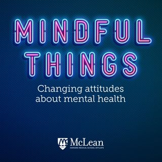 Mindful Things