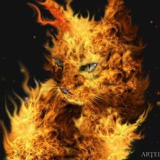 Light Kong's Fire.