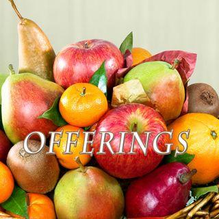 Offerings, Genesis 4:3-5