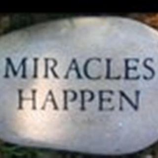 In bezug auf Wunder (6)