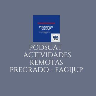 Apertura AVA - RFP PEFACIJUP - 2021