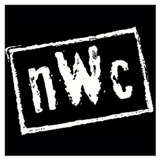 Episode 249 - Hulk Hogan forms the New Welcoming Committee - nWc