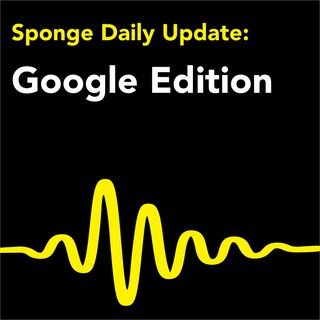 Sponge Daily Update: Google Edition