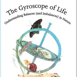 The Gyroscope of Life - Naturalist David Parrish on Big Blend Radio