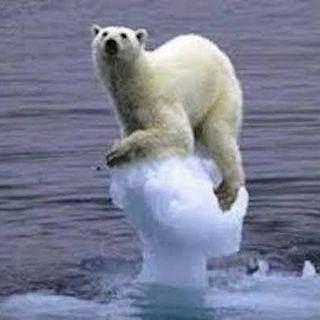 SOS ghiacciao alla deriva classe 2 D