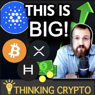 Cardano ADA Smart Contracts - IRS Crypto - Visa CEO Bitcoin - SEC Gary Gensler Ripple XRP & Coinbase