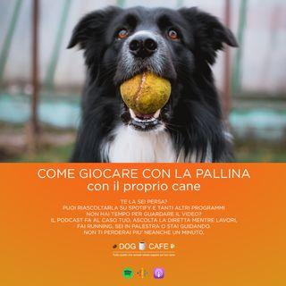 #012 - Come giocare con la pallina con il proprio cane