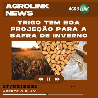 Agrolink News - Destaques do dia 17 de março