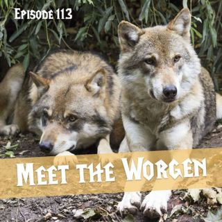 FC 113: Meet the Worgen